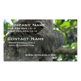 Sloth Business Card