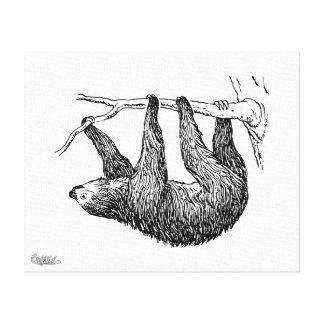 Sloth Gallery Wrap Canvas