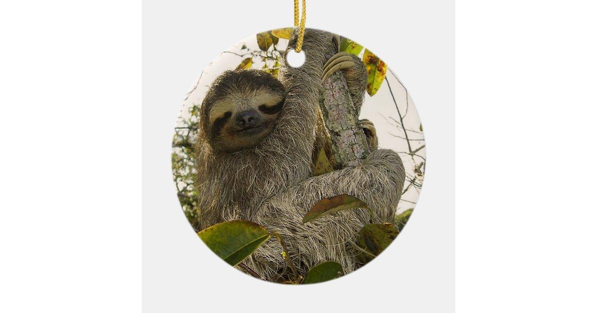 Sloth Ceramic Ornament Zazzle Com