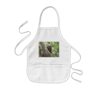 Sloth Climbing Aprons