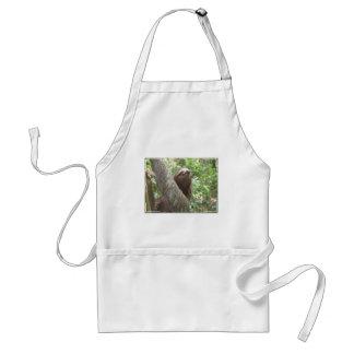 Sloth Climbing Apron