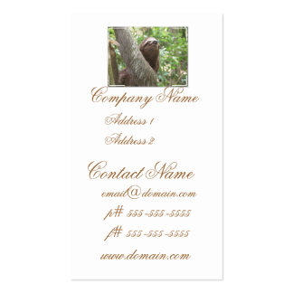Sloth Climbing Double-Sided Standard Business Cards (Pack Of 100)