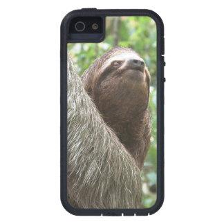 Sloth Climbing iPhone SE/5/5s Case