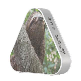 Sloth Climbing Speaker