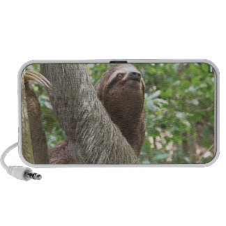 Sloth Climbing Notebook Speakers