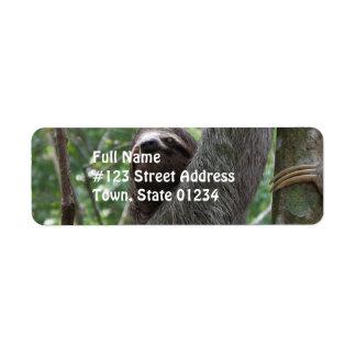 Sloth Climbing Tree Labels