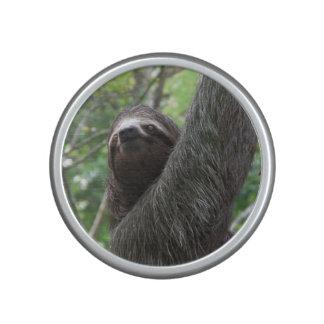 Sloth Climbing Tree Bluetooth Speaker