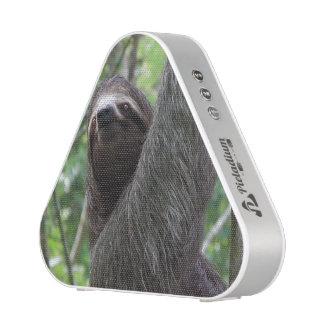 Sloth Climbing Tree Speaker