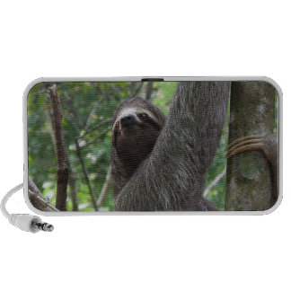 Sloth Climbing Tree PC Speakers