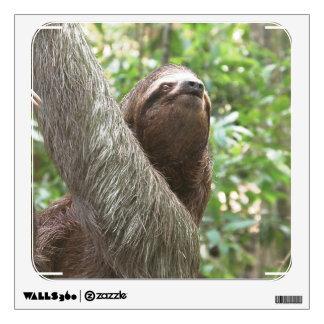 Sloth Climbing Room Graphics
