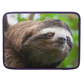 SLOTH Computer Sleeve Sleeves For MacBook Pro