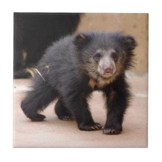 sloth-cub10x10 teja