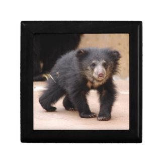sloth-cub10x10 caja de recuerdo