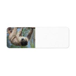 Sloth Customizable Address Lables Label