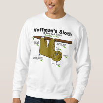 Sloth design sweatshirt