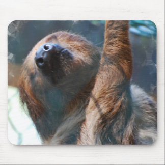 Sloth Face Mouse Pad