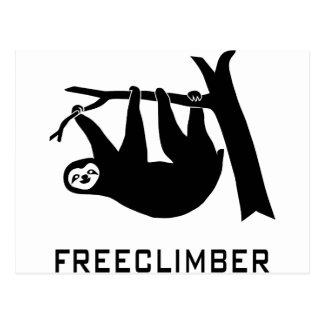 sloth faultier animal pútrido climber freeclimber  postal