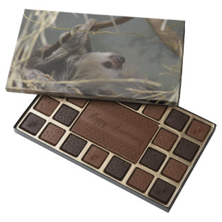 Sloth Hanging from a Branch 45 Piece Box Of Chocolates