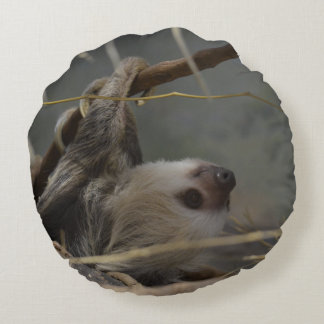 Sloth Hanging from a Branch Round Pillow