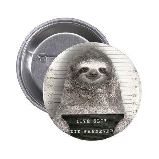 Sloth in a Mugshot Pinback Button