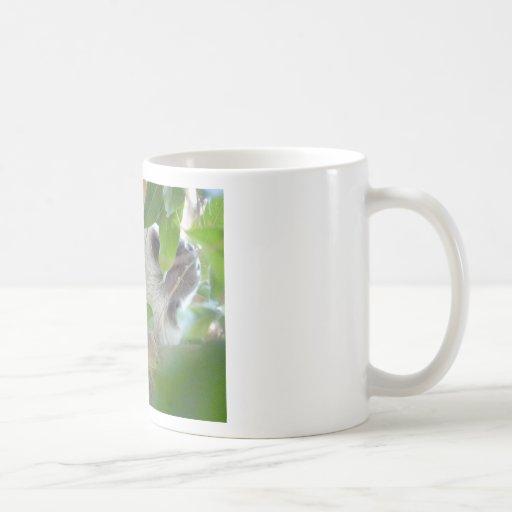 sloth in tree coffee mug