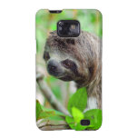 Sloth in tree Nicaragua Samsung Galaxy S2 Covers