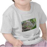 sloth in tree tshirt