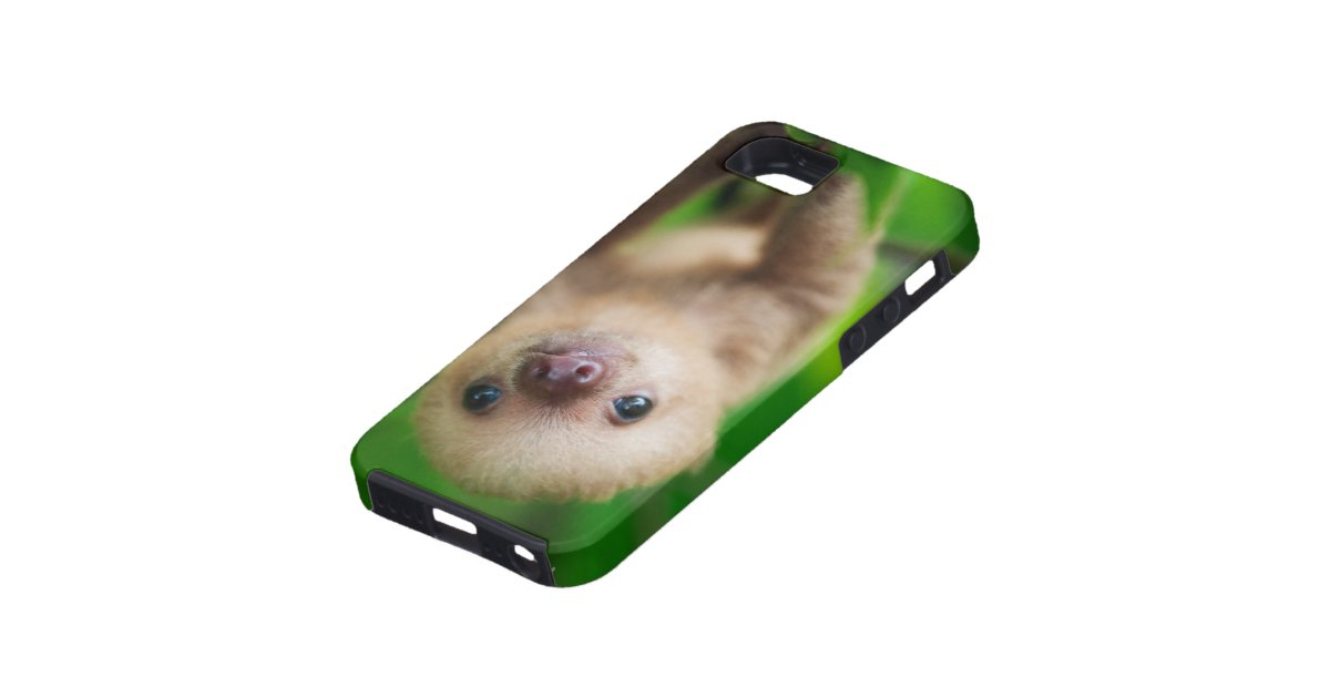 sloth iphone case sloth iphone zazzle 12989