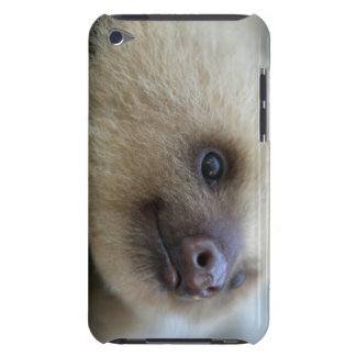 Sloth iPod Case-Mate Case