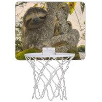 sloth mini basketball hoops