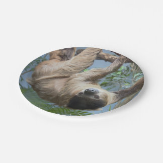 Sloth Paper Plates