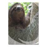 """Sloth Photo Design Invitation 5"""" X 7"""" Invitation Card"""