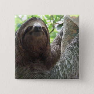 Sloth Photo Design Square Pin