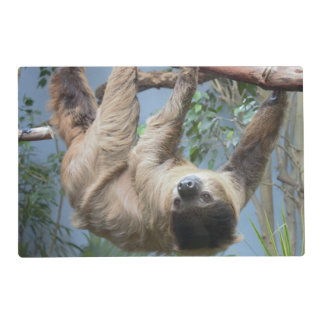 Sloth Photo Place Mat