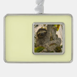 sloth silver plated framed ornament