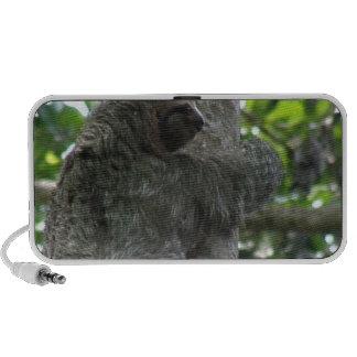 Sloth Portable Speakers