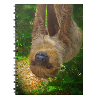 Sloth Rainforest Gifts Notebook