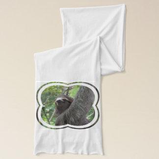 Sloth Scarf