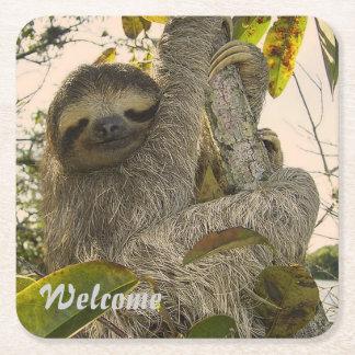 sloth square paper coaster