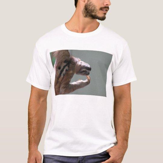 Sloth Thinking T-Shirt