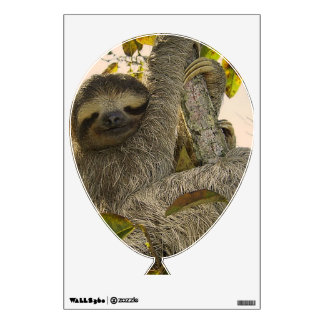 sloth wall skins