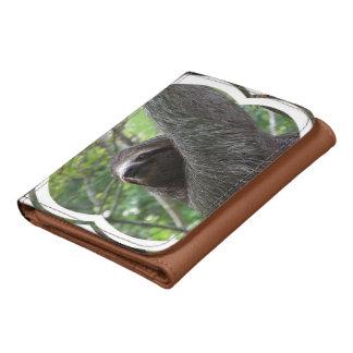Sloth Wallet