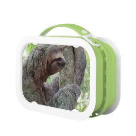 Sloth Yubo Lunch Box