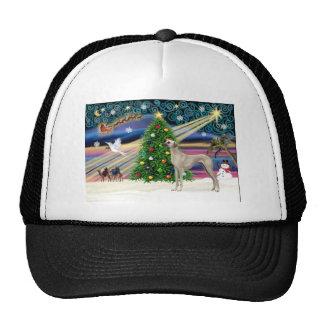 Sloughi-soporte de la magia de Navidad Gorras De Camionero