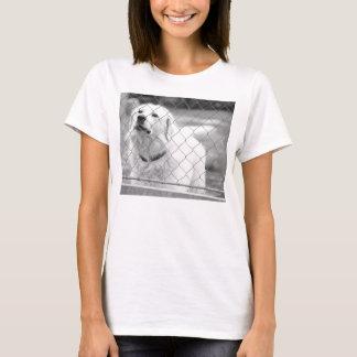 slovak-cuvac T-Shirt