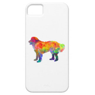 Slovakian Chuvach in watercolor iPhone SE/5/5s Case