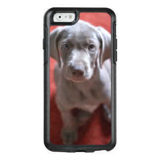 Slovakian Rough Haired Pointer 2 OtterBox iPhone 6/6s Case