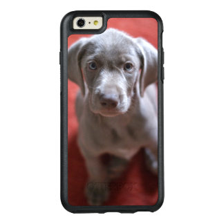 Slovakian Rough Haired Pointer 2 OtterBox iPhone 6/6s Plus Case