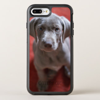 Slovakian Rough Haired Pointer 2 OtterBox Symmetry iPhone 7 Plus Case