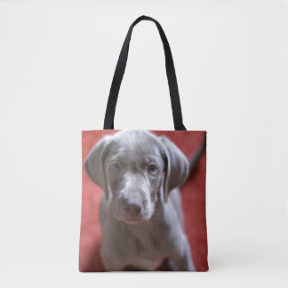 Slovakian Rough Haired Pointer 2 Tote Bag